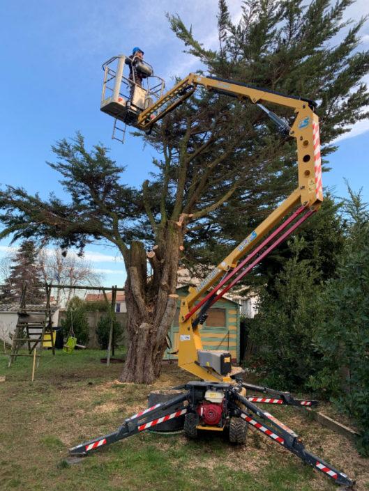 Paysagiste La Plaine sur Mer - entretien des arbres avec nacelle